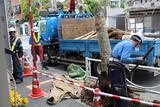 街路樹工事5