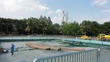 木場公園3