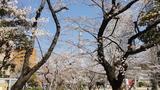 錦糸公園タワー2
