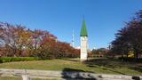 猿江公園4