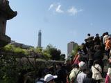 藤祭り14