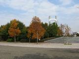木場公園2