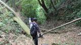 林道ツーリング10