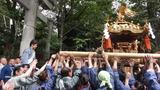 天祖神社宮入3