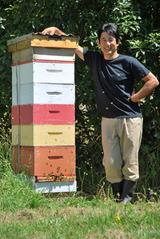 NZハチミツ