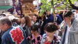 猿江神社神輿4