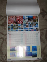 フィットネスクラブカレンダー