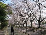 猿江公園3