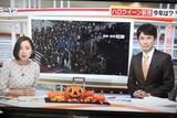 かぼちゃニュース