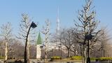 冬猿江公園