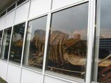 鯨ギャラリー2