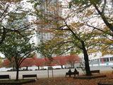 錦糸公園秋2