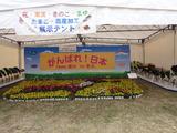 東京都農業祭2