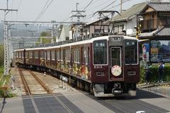 HK8313-KOTO_A204