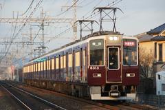 HK8313-KOTO_53
