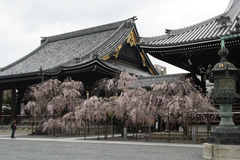 201504Kyoto_048