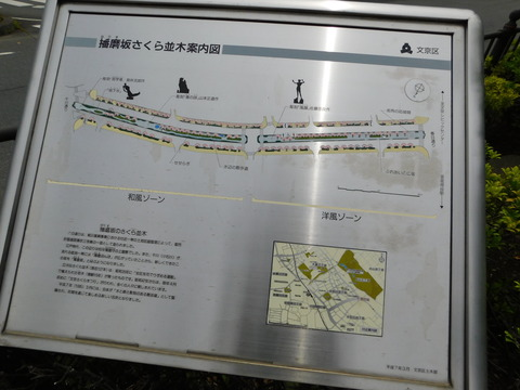 DSCN4309