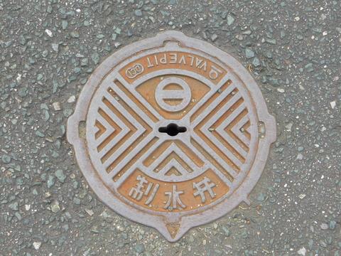 DSCN9553