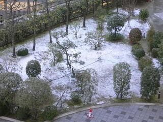 うっすら雪積もる