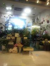 新しい花屋さん