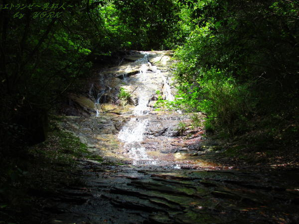 1898白簾の滝140629