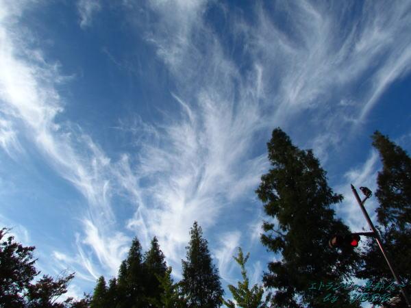 0453秋の空と雲111023