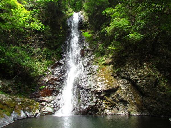 7521竜頭の滝130526