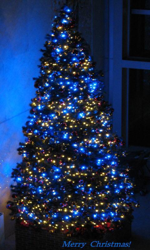 携帯用 0090クリスマスツリー480×800