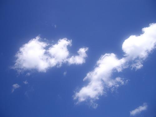 8月11日抜けるような青空1