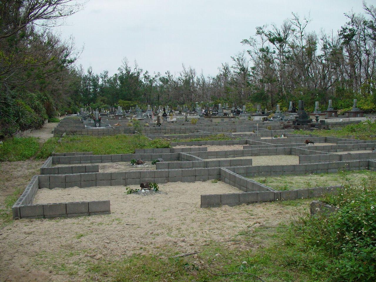 墓地全景1