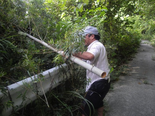 『九州いろり塾』(福岡)竹の切り出し