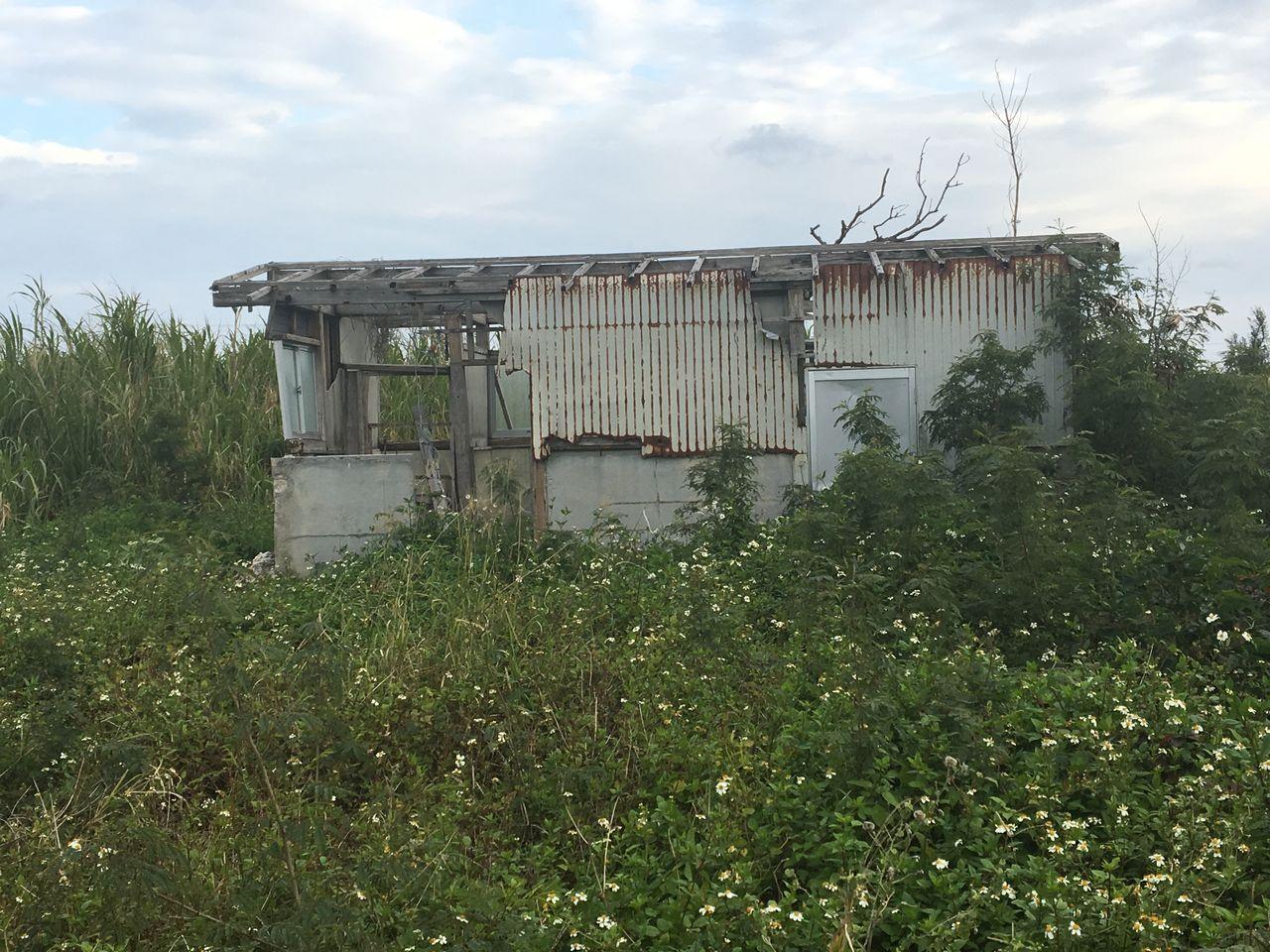 郷里の廃屋