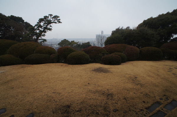 tojo_05