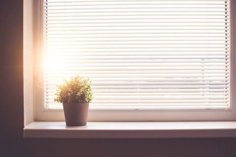 sun-shining-through-the-window-with-sun-blind-picjumbo-com