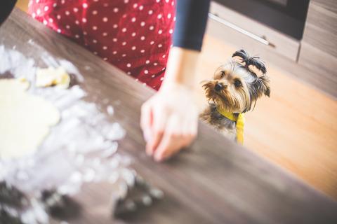 christmas-baking-our-little-helper-picjumbo-com
