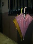 雨の日の玄関にて