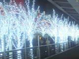 セントラルタワーズのクリスマスイルミネーション