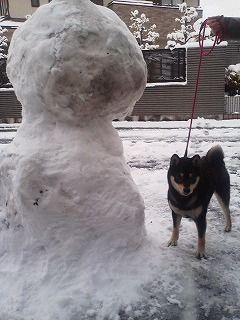 23年1月17日大雪の画像