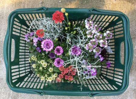 園芸店でお花を購入するとき