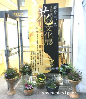 イベント:2016年2月川口市花の展示会