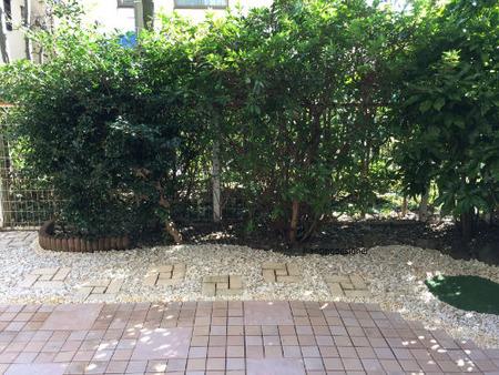 花壇右側:樹木下