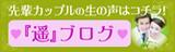 harukablog_banner