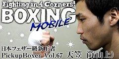 pickup_boxer67_small