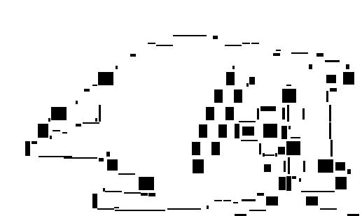 pMNtA3