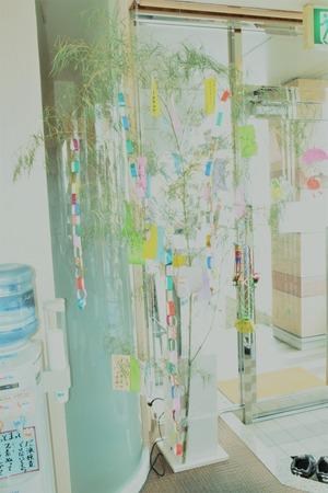 2019年よしどめ歯科七夕イベント