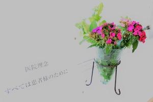 よしどめ歯科のお花〜吉田の郷さんからの頂き物(2)