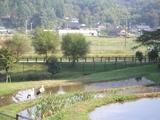 豊岡市コウノトリの郷公園