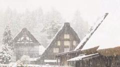 今季初めて積雪を観測、合掌集落も雪化粧 岐阜・白川村