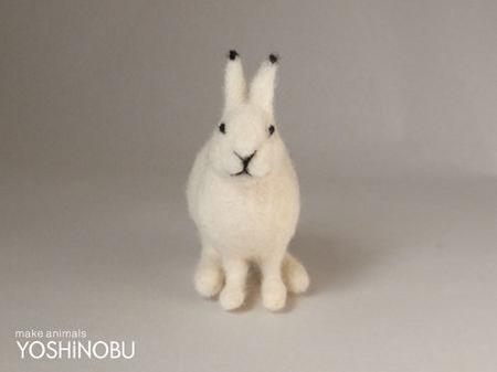 ユキウサギの画像 p1_14