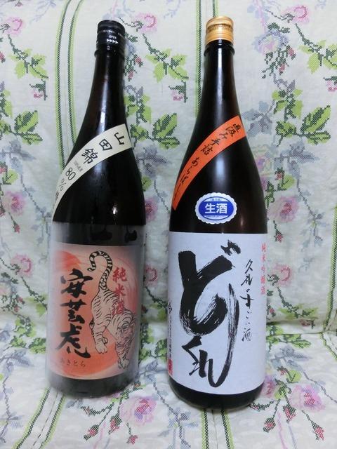 2016花見 (2)